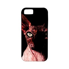Sphynx Cat Apple Iphone 5 Classic Hardshell Case (pc+silicone) by Valentinaart
