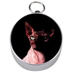 Sphynx cat Silver Compasses Front
