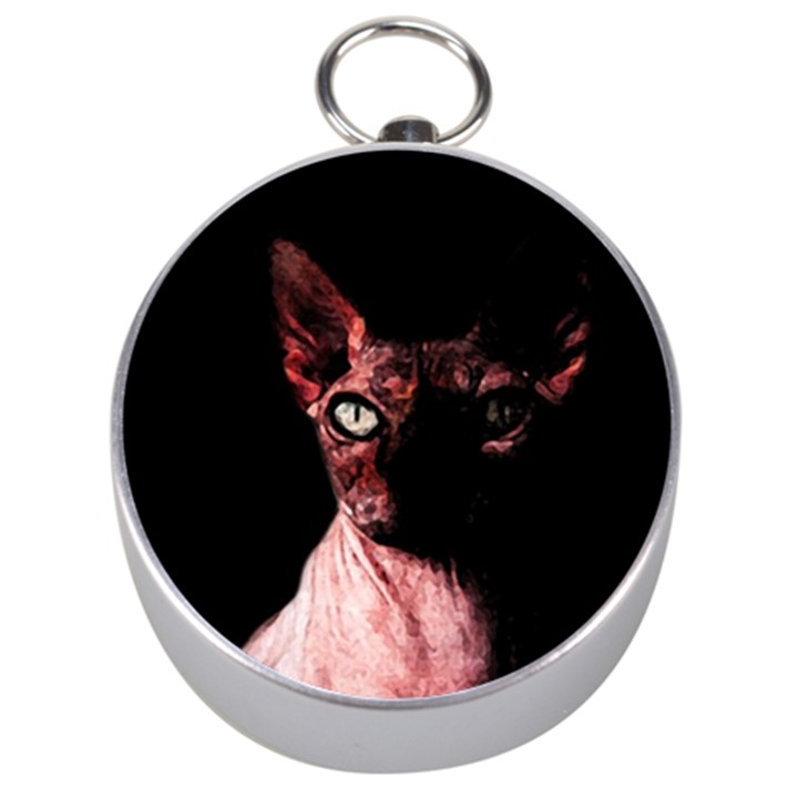 Sphynx cat Silver Compasses