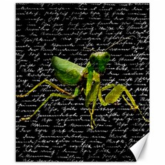 Mantis Canvas 8  X 10  by Valentinaart