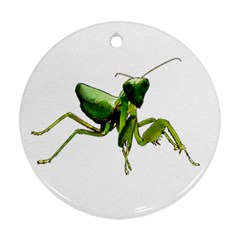 Mantis Ornament (round) by Valentinaart
