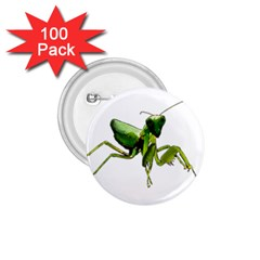 Mantis 1 75  Buttons (100 Pack)  by Valentinaart