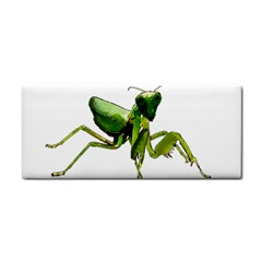 Mantis Cosmetic Storage Cases by Valentinaart