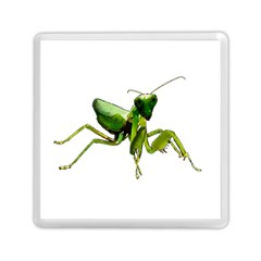 Mantis Memory Card Reader (square)  by Valentinaart