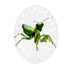 Mantis Oval Filigree Ornament (two Sides) by Valentinaart