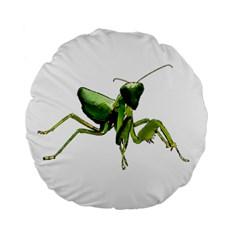 Mantis Standard 15  Premium Flano Round Cushions by Valentinaart