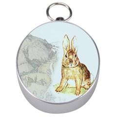 Rabbit  Silver Compasses by Valentinaart