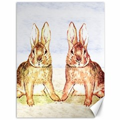 Rabbits  Canvas 36  X 48   by Valentinaart