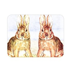 Rabbits  Double Sided Flano Blanket (mini)  by Valentinaart