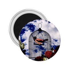 Vintage Bird In The Cage  2 25  Magnets by Valentinaart