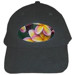 Premier Mix Flower Black Cap by alohaA