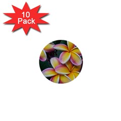 Premier Mix Flower 1  Mini Buttons (10 Pack)  by alohaA