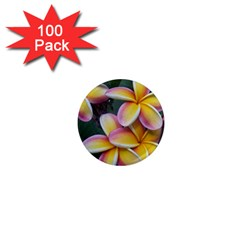Premier Mix Flower 1  Mini Magnets (100 Pack)  by alohaA