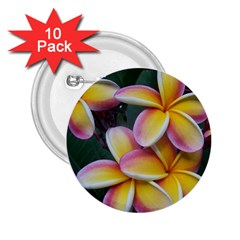 Premier Mix Flower 2 25  Buttons (10 Pack)  by alohaA
