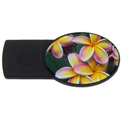 Premier Mix Flower Usb Flash Drive Oval (2 Gb) by alohaA