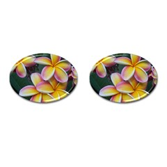Premier Mix Flower Cufflinks (oval) by alohaA