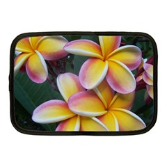 Premier Mix Flower Netbook Case (medium)  by alohaA