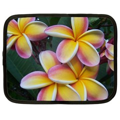 Premier Mix Flower Netbook Case (xl)  by alohaA