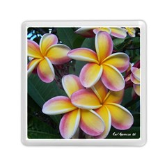Premier Mix Flower Memory Card Reader (square)  by alohaA