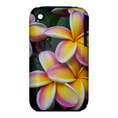 Premier Mix Flower Iphone 3s/3gs by alohaA