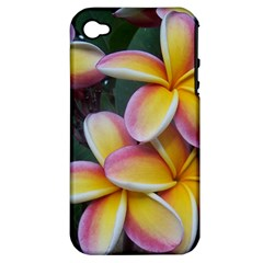 Premier Mix Flower Apple Iphone 4/4s Hardshell Case (pc+silicone) by alohaA