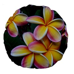 Premier Mix Flower Large 18  Premium Round Cushions by alohaA