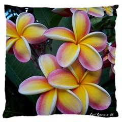 Premier Mix Flower Standard Flano Cushion Case (two Sides) by alohaA