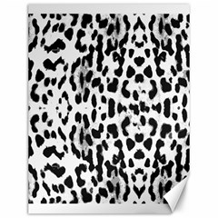 Animal Print Canvas 12  X 16   by Valentinaart