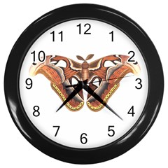 Butterfly Animal Insect Isolated Wall Clocks (black) by Simbadda