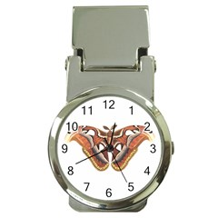 Butterfly Animal Insect Isolated Money Clip Watches by Simbadda