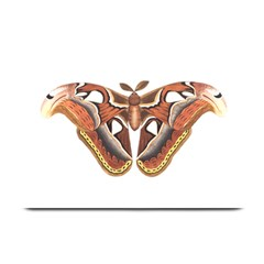 Butterfly Animal Insect Isolated Plate Mats by Simbadda