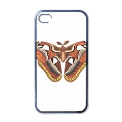 Butterfly Animal Insect Isolated Apple Iphone 4 Case (black) by Simbadda