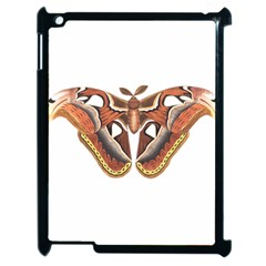 Butterfly Animal Insect Isolated Apple Ipad 2 Case (black) by Simbadda