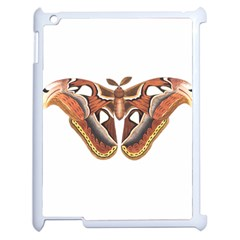 Butterfly Animal Insect Isolated Apple Ipad 2 Case (white) by Simbadda