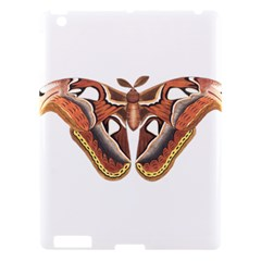 Butterfly Animal Insect Isolated Apple Ipad 3/4 Hardshell Case by Simbadda