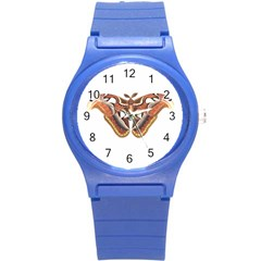 Butterfly Animal Insect Isolated Round Plastic Sport Watch (s) by Simbadda