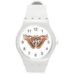Butterfly Animal Insect Isolated Round Plastic Sport Watch (m) by Simbadda