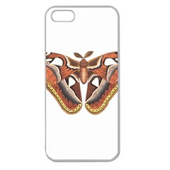 Butterfly Animal Insect Isolated Apple Seamless Iphone 5 Case (clear) by Simbadda