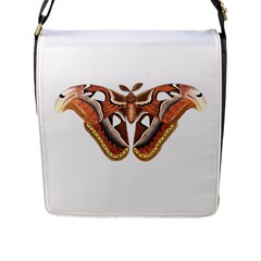 Butterfly Animal Insect Isolated Flap Messenger Bag (l)  by Simbadda