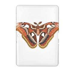 Butterfly Animal Insect Isolated Samsung Galaxy Tab 2 (10 1 ) P5100 Hardshell Case  by Simbadda