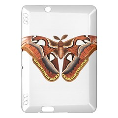 Butterfly Animal Insect Isolated Kindle Fire Hdx Hardshell Case by Simbadda