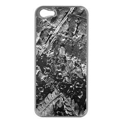 Fern Raindrops Spiderweb Cobweb Apple Iphone 5 Case (silver) by Simbadda