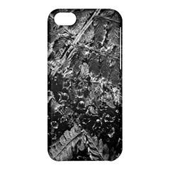 Fern Raindrops Spiderweb Cobweb Apple Iphone 5c Hardshell Case by Simbadda