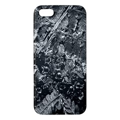 Fern Raindrops Spiderweb Cobweb Iphone 5s/ Se Premium Hardshell Case by Simbadda