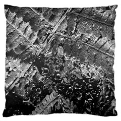 Fern Raindrops Spiderweb Cobweb Standard Flano Cushion Case (two Sides) by Simbadda