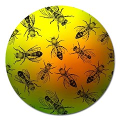 Insect Pattern Magnet 5  (round) by Simbadda