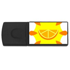 Citrus Cutie Request Orange Limes Yellow Usb Flash Drive Rectangular (4 Gb) by Alisyart