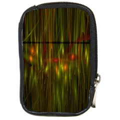 Fractal Rain Compact Camera Cases by Simbadda
