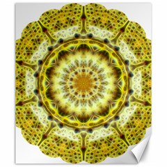 Fractal Flower Canvas 20  X 24   by Simbadda