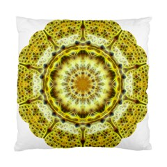 Fractal Flower Standard Cushion Case (two Sides) by Simbadda